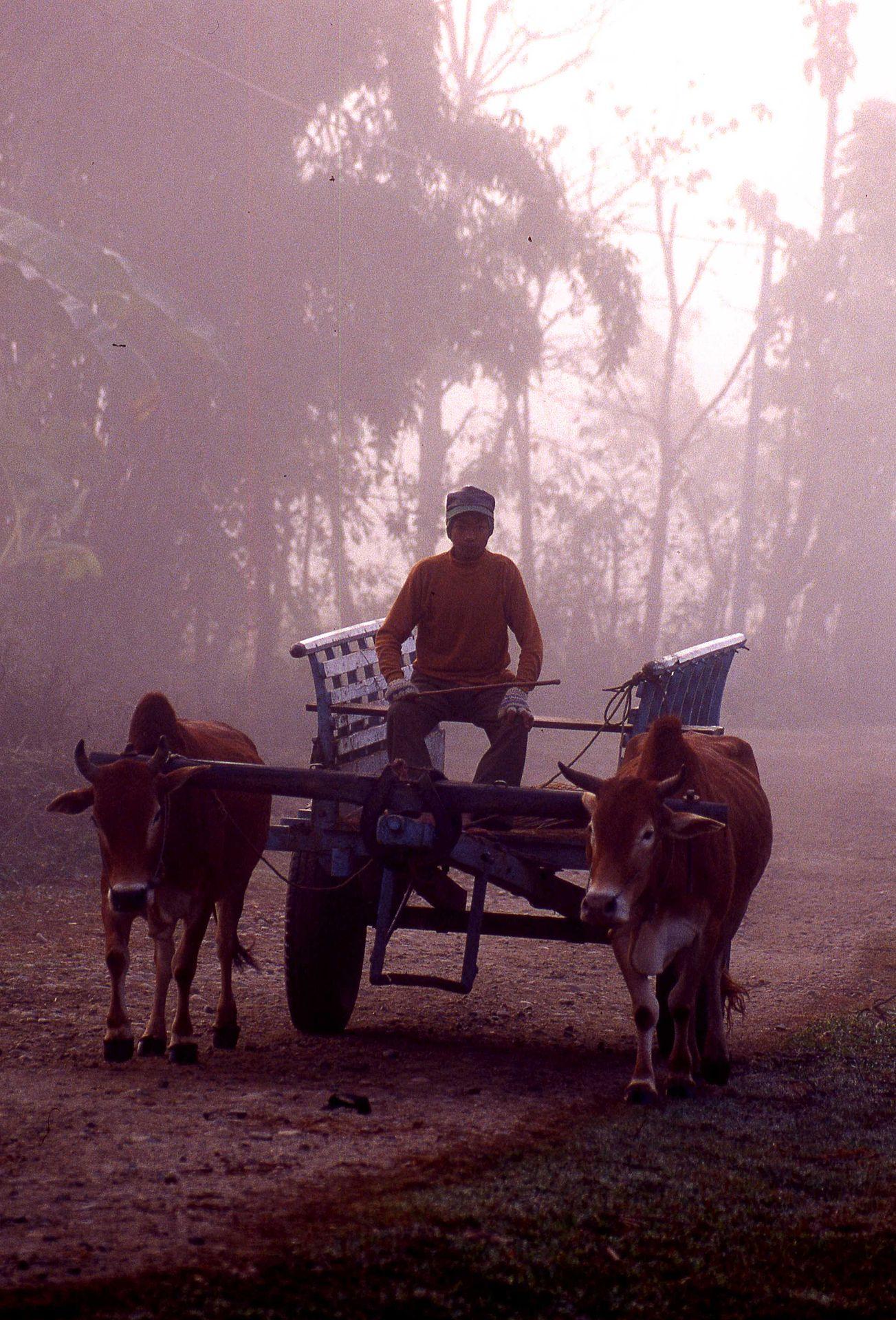 ネパールの世界遺産!美しくて感動するネパールの絶景リストまとめ